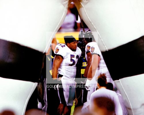 Baltimore Ravens linebacker, Ray Lewis, talks to defense prior to Super Bowl XXXV against the New York Giants at Raymond James Stadium in Tampa, Fl. Lewis led the Baltimore Ravens to a 34-7 victory over theNew York Giants and was selected as the MVP