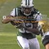 New York Jets running back CHRIS IVORY eyes the goal