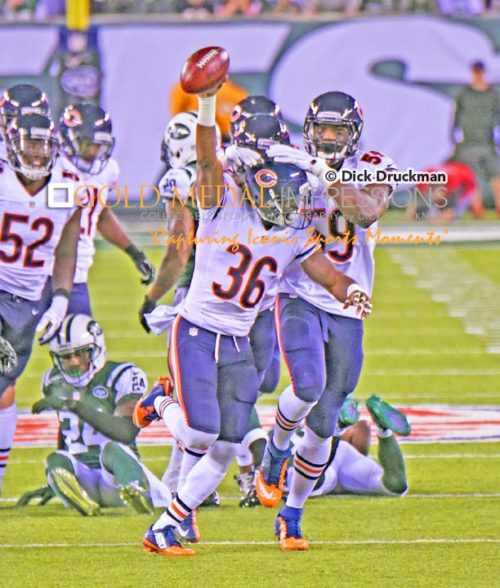 Chicago Bears safety Ahmad Dixon recovers a New York Jets fumble in the first quarter at MetLife Stadium. The Bears went on to wi n 27-19.(AP Photo/Dick Druckman)
