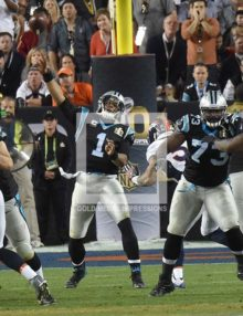 CAM NEWTON COMPLETES PASS TO COREY BROWN