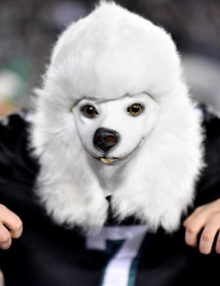 DOGGED Eagles fan JEB BESECKER
